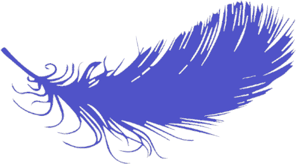 PLUME-SEULE_bleu